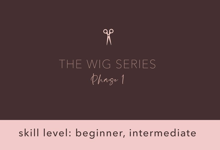 Wig Cutting Series - Phase 1
